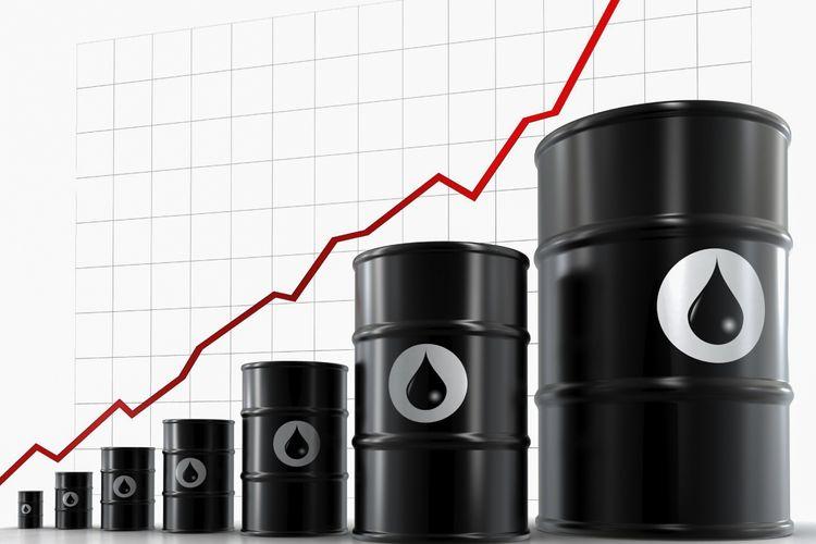 """Nazirlik: """"OPEC+"""" çərçivəsində neft hasilatının azaldılması optimal olmaz"""