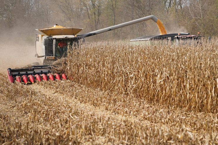 UK plans to cut tariffs on U.S. agricultural imports