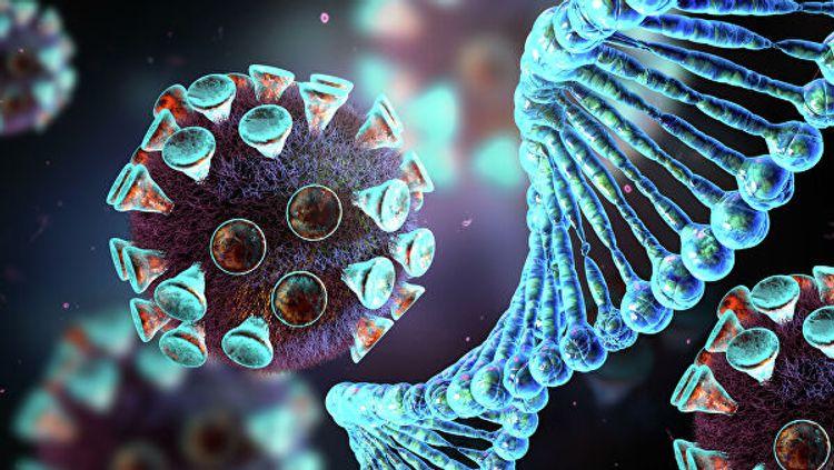 Ученые рассказали о влиянии коронавируса на легкие