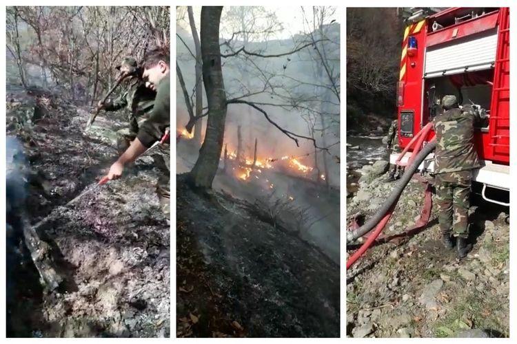 В результате обстрела армянскими ВС в лесах и на гражданских объектах произошли пожары