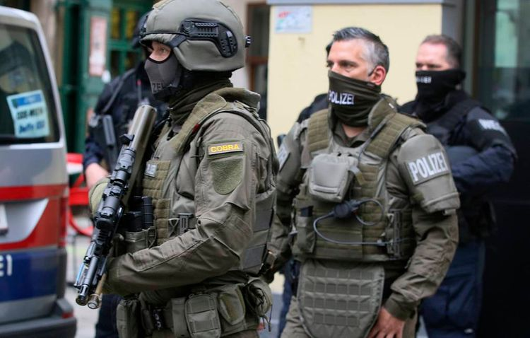 Suspect in Vienna shootings detained in Austria's Linz