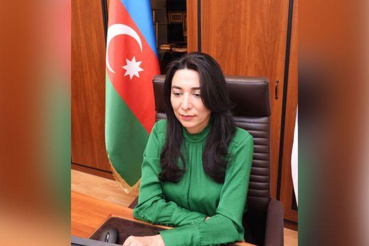 Состоялось онлайн заседание омбудсменов тюркоязычных стран