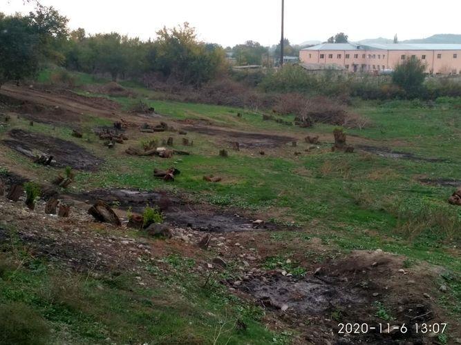Обнародованы результаты экологических мониторингов, проведенных на освобожденных от оккупации территориях
