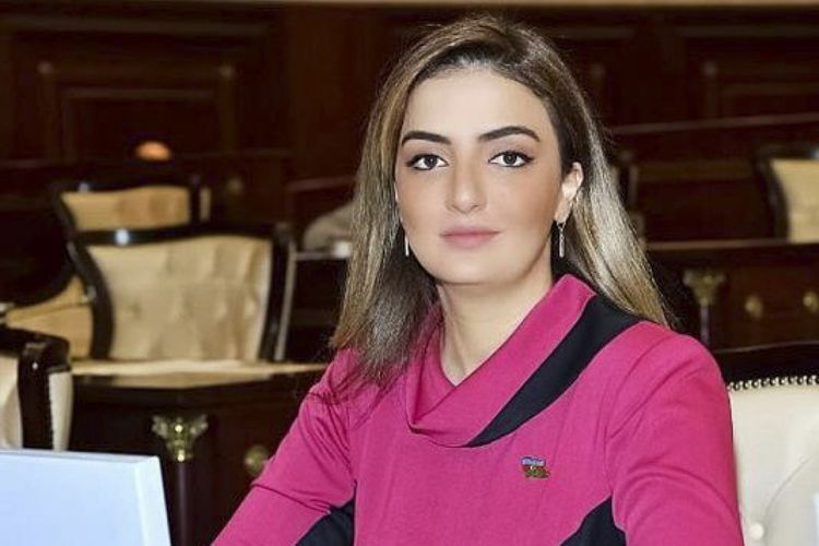 Azerbaijani MP Konul Nurullayeva reprimanded