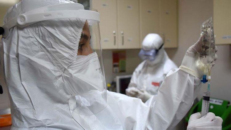 Turkey reports 3,116 more coronavirus patients