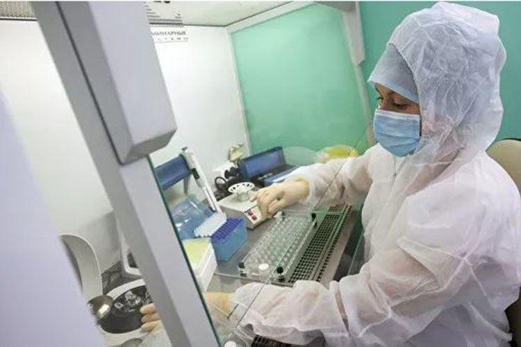 В Армении за сутки выявлено 1482 новых случая заражения коронавирусом