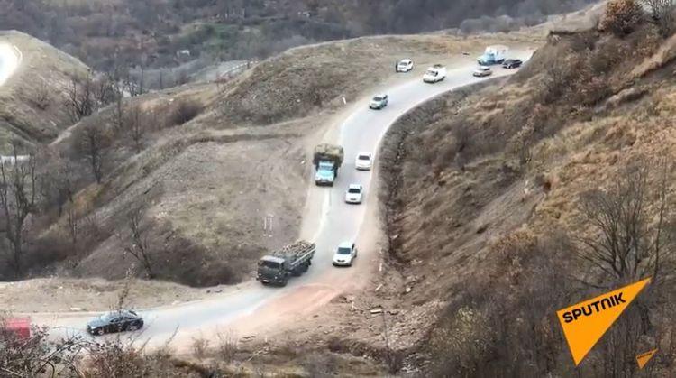 Покидающие Кяльбаджар армяне вырубают деревья и увозят с собой в Армению - ВИДЕО
