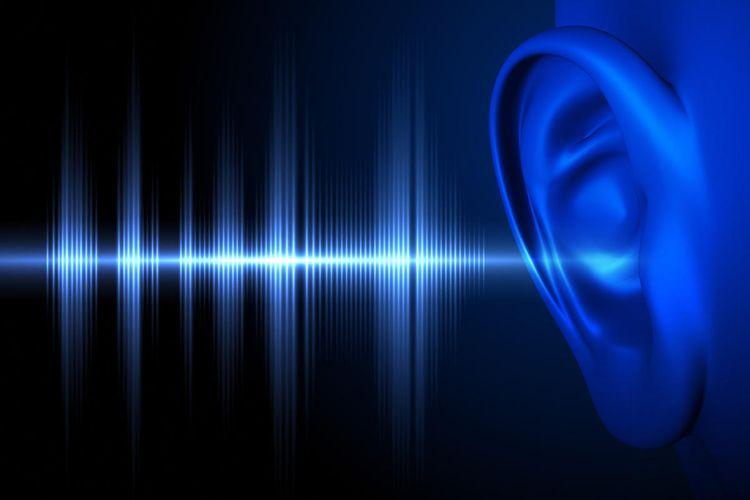 Azərbaycan alimləri akustik küy çirklənməsinin insan sağlamlığına təsirini araşdırıb