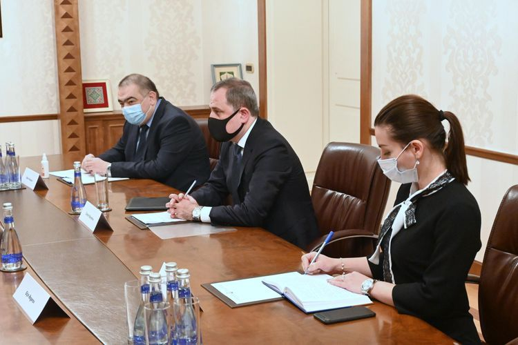 Azerbaijani FM meets with President of OIC Youth Forum