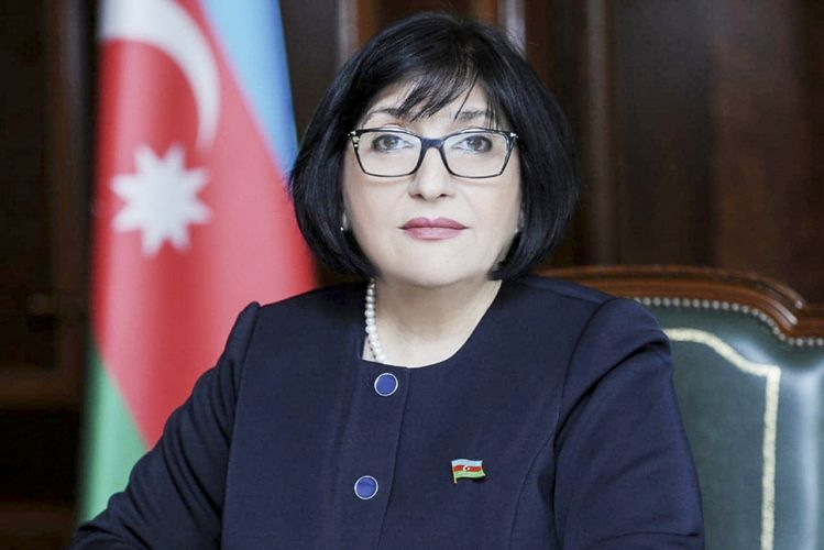 Azerbaijani Parliament's speaker meets with heads of TURKPA, Turkic Academy, Turkish Culture and Heritage Foundation