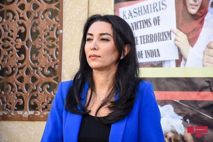 Омбудсмен обратилась к международной общественности в связи с восстановлением прав вынужденных переселенцев
