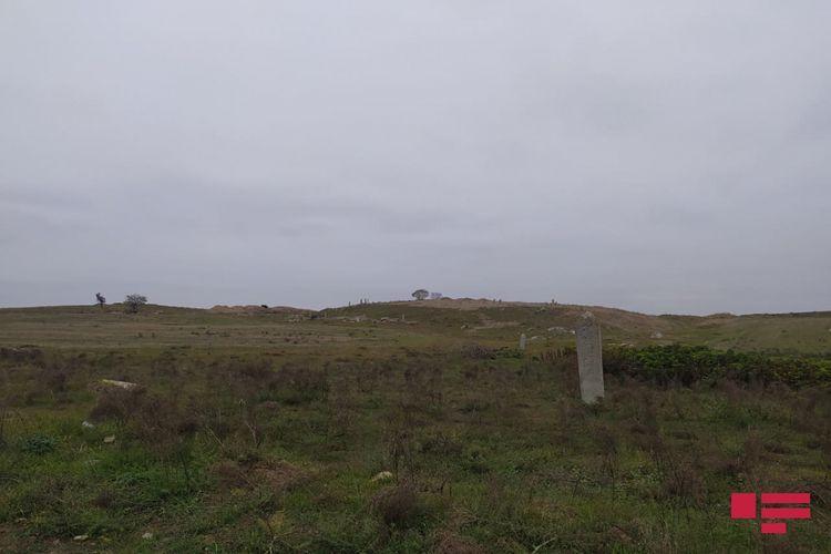 Армяне разрушили в Физули сельское кладбище, территорию превратили в пшеничное поле