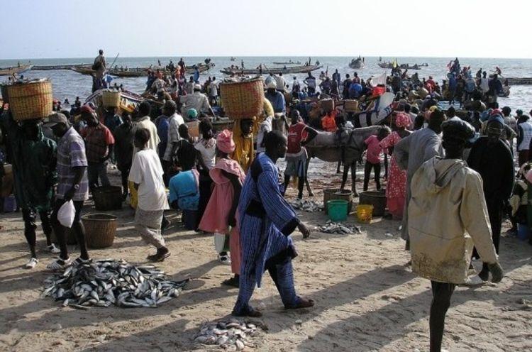Более ста человек заразились неизвестной болезнью в Сенегале