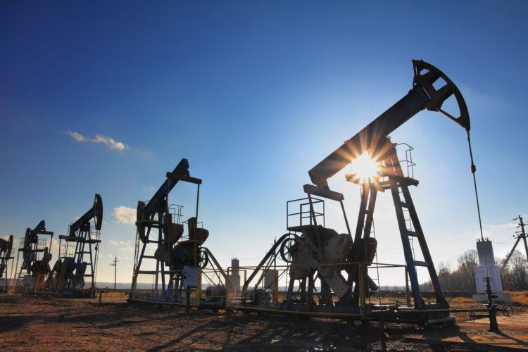 Price of Brent oil exceeds USD 44