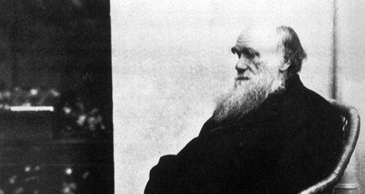 Darvinin iki əlyazması Kembric Universitetinin kitabxanasından oğurlanıb