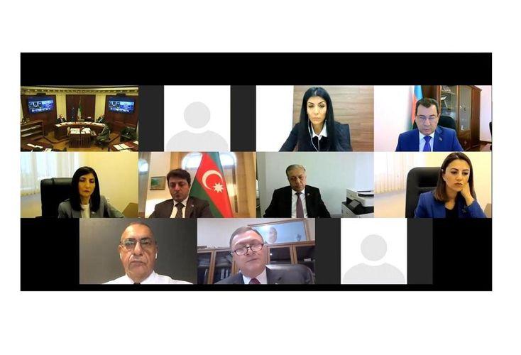 Azərbaycan və İtaliya deputatlarının videokonfrans formatında görüşü keçirilib