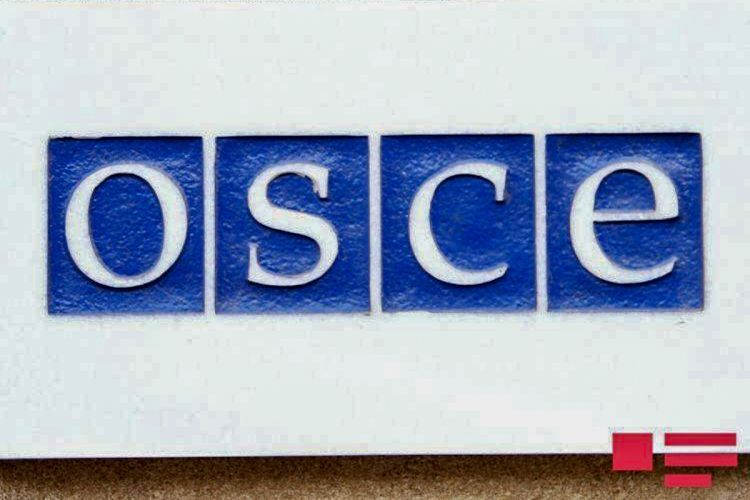 OSCE: Kaspzyk does not have the mandate to conduct investigations or to verify and report on the military potential of any side