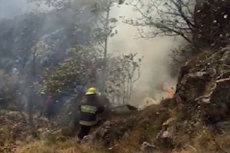 Azerbaijani MES: Fire breaks out in the forest area far away from the combat zone due to the shell strikes by Armenia - VIDEO