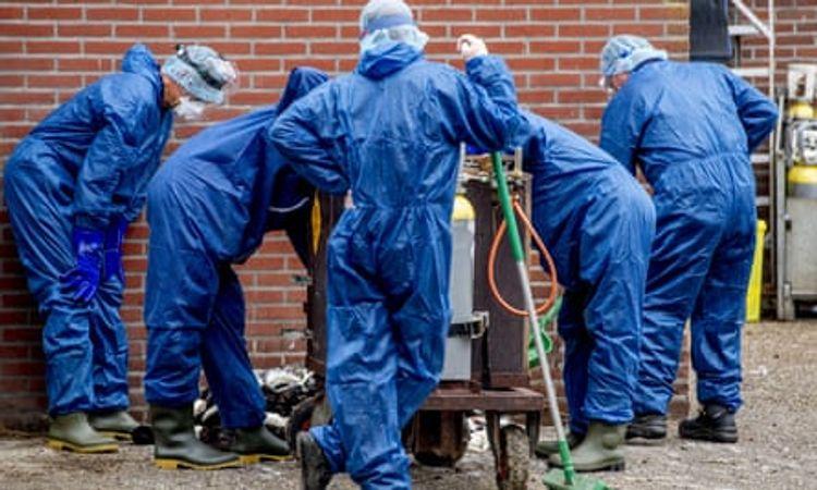 "Germany ""can and will"" avoid second coronavirus lockdown"