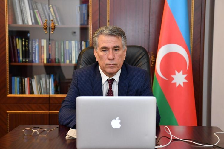 NATO PA's Defence and Security Committee holds online meeting