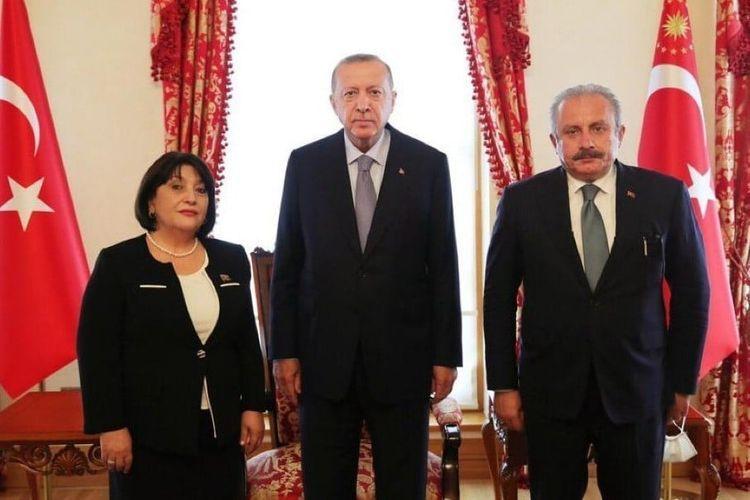 Speaker of Azerbaijani Parliament meets with Turkish President