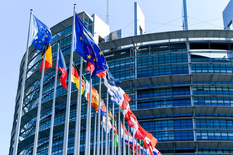 European Parliament adopts resolution calling for tougher sanctions on Russia over Navalny