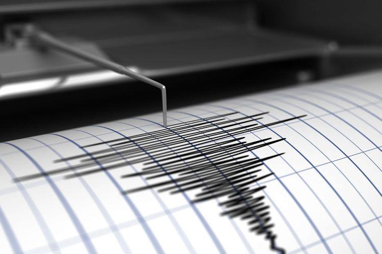 В Турции произошло землетрясение магнитудой 4,5