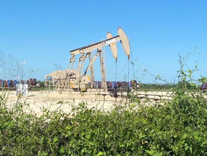Oil falls on fuel demand growth concerns as coronavirus lingers