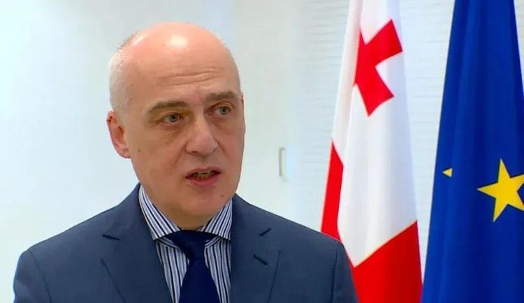 """Zalkaliani: """"New decisions of experts on delimitation of borders, adopted"""""""