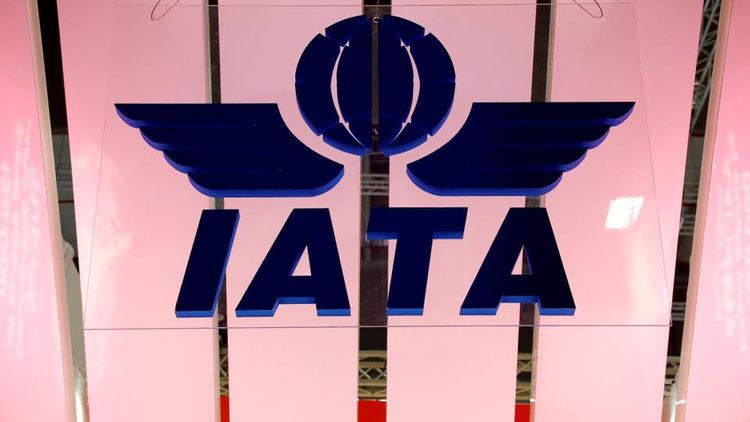 Global airline body IATA cancels annual meeting over travel curbs
