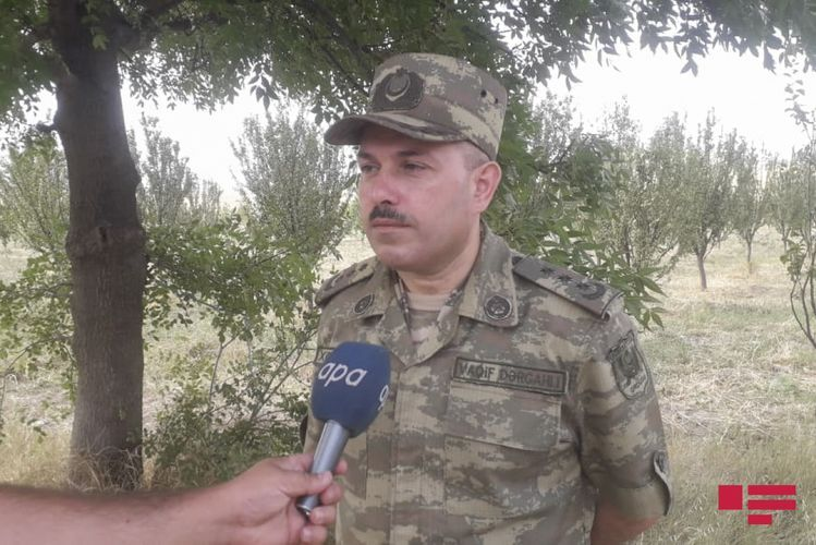 """Vagif Dargahli: """"The enemy fired at the territory of the Goranboy region"""""""