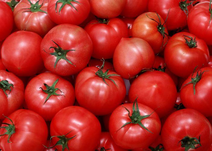 Azərbaycanın daha 7 müəssisəsinə Rusiyaya pomidor ixrac etməyə icazə verilib