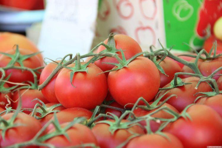 Еще 7 азербайджанским предприятиям разрешили экспортировать помидоры в Россию