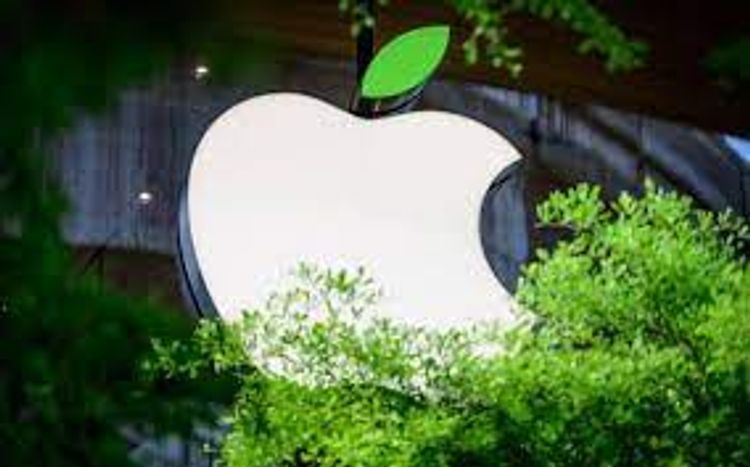 Apple announces 200 mln USD fund in forestry projects to reduce carbon from atmosphere