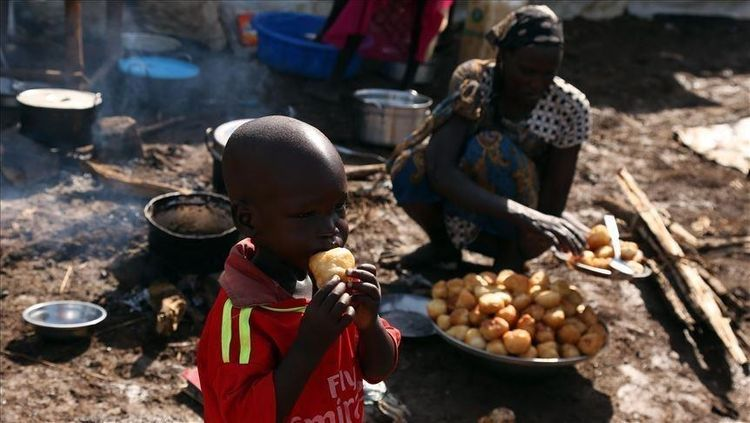 Over 100M people in Africa face food insecurity