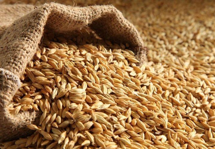 Azerbaijan increased wheat import