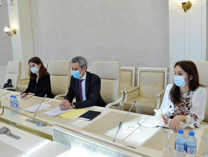 "French Ambassador: ""France always recognized Azerbaijan's territorial integrity"""