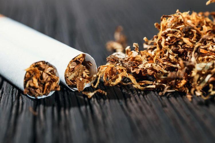 Azərbaycana bu il 23 mln. dollarlıq tütün məmulatları idxal olunub