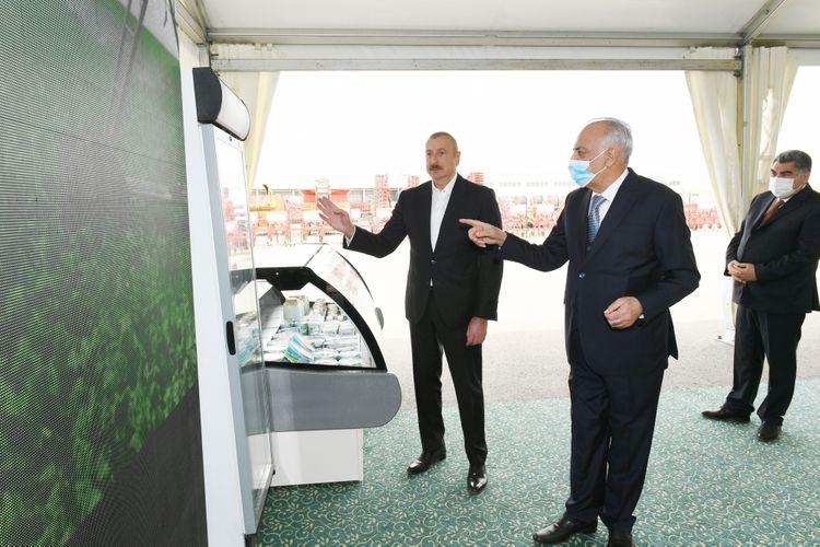 В Гаджигабуле состоялось открытие «Шамахинского агропарка Азерсун» - <span class=