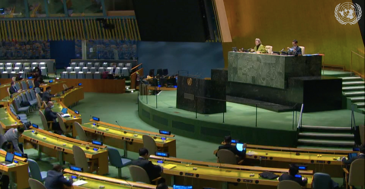 UNGA president reaffirms strong support for boosting biodiversity