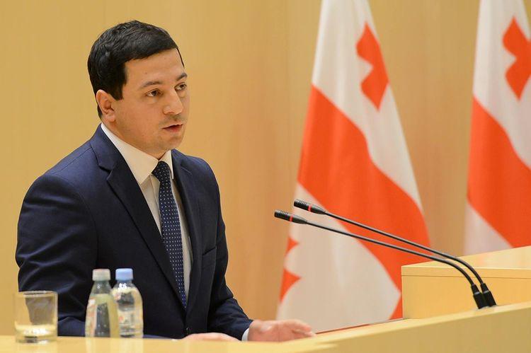 Gürcüstan parlamentinin sədri istefa verib
