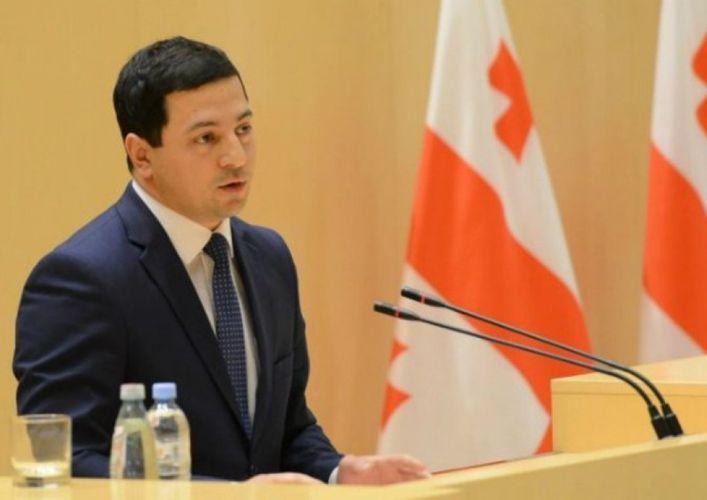 Arçil Talakvadze Gürcüstan parlamentinin vitse-spikeri seçilib
