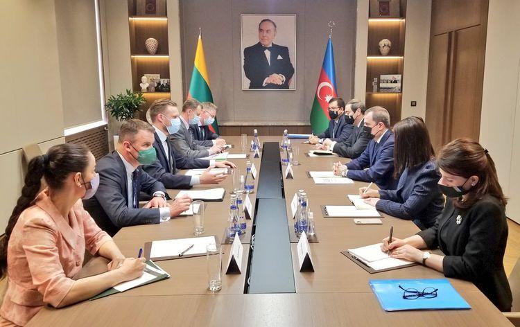 В Баку состоялась встреча глав МИД Азербайджана и Литвы - <span class=