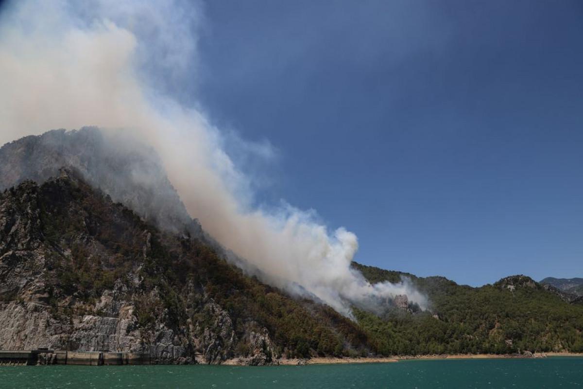 In Turkey wildfire, birth of