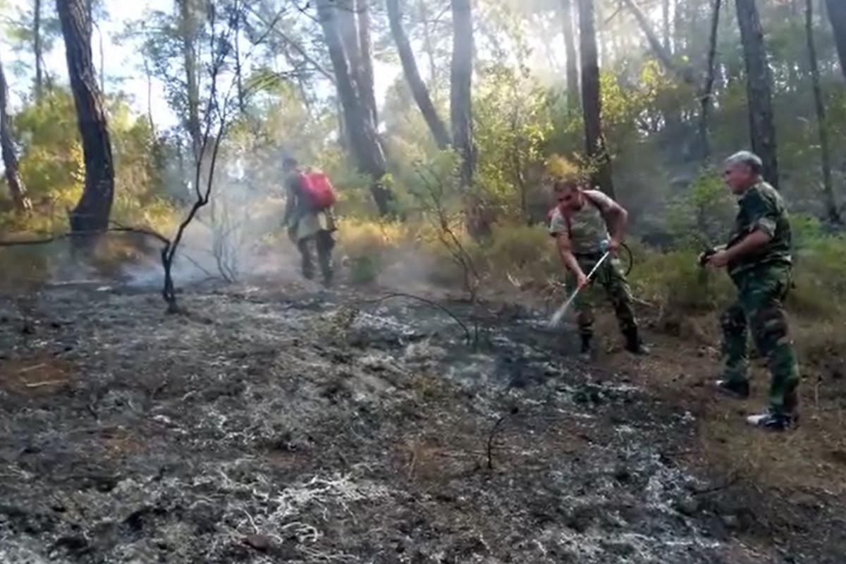 В Турции потушено 107 из 112 пожаров