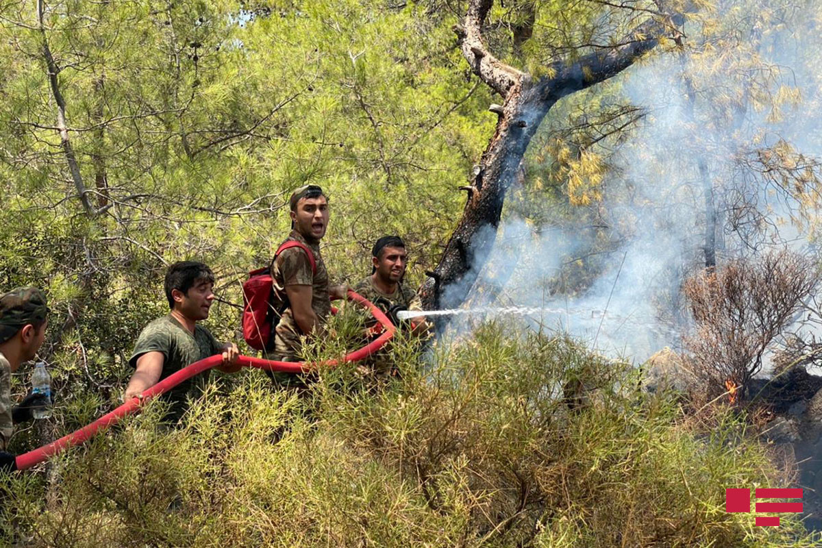 """Azerbaijani firefighters in the fire zone of Turkey -<span class=""""red_color"""">PHOTOLENT from the scene"""