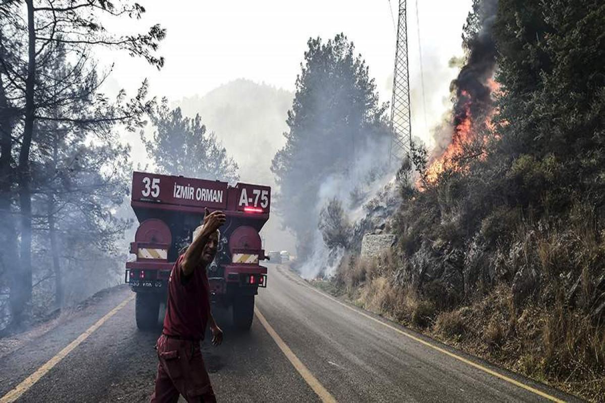 В Бодруме лесные пожары приблизились к местной ТЭЦ