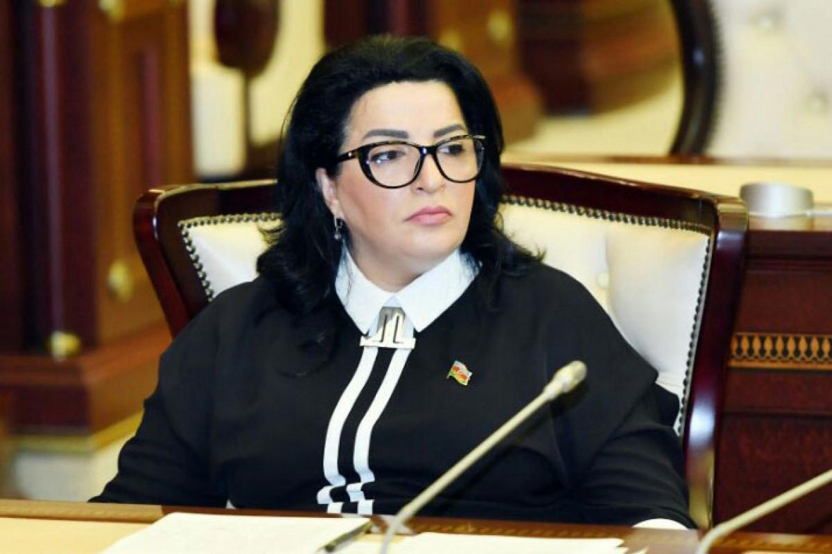 Депутат: Действия Жириновского направлены на нанесение ущерба российско-азербайджанским отношениям