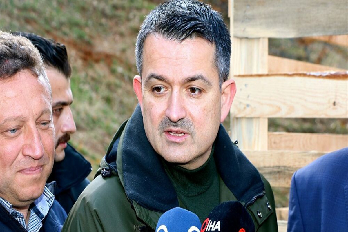 """Turkish Minister: """"Fire continues in 7 regions of Turkey"""""""