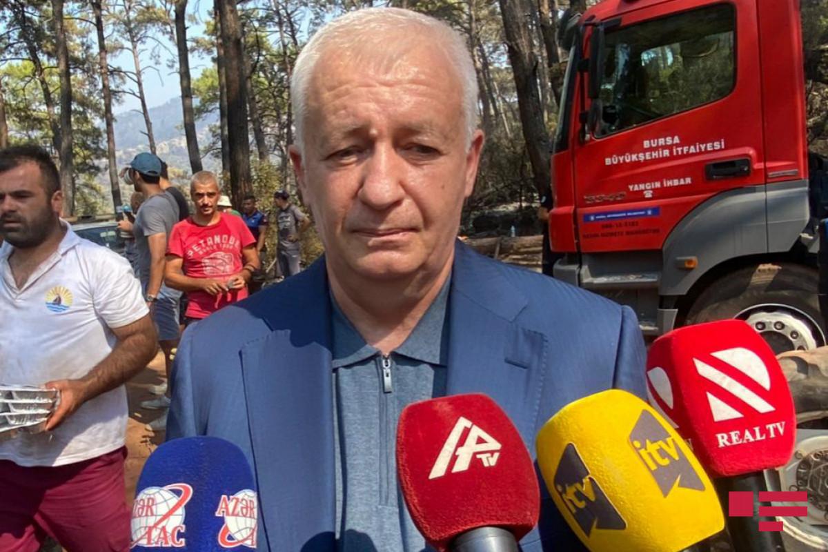 Замминистра: Прибывшие в Турцию азербайджанские пожарные прилагают все усилия для тушения пожаров